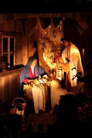 Waldweihnacht der Pfarrjugend